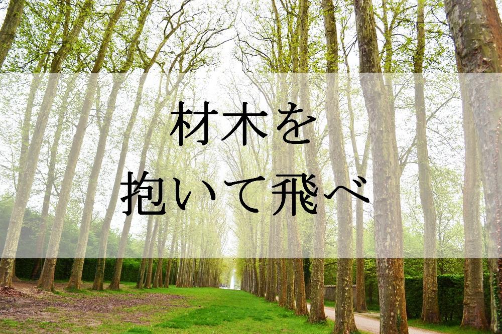 f:id:aoikara:20170626162929j:plain