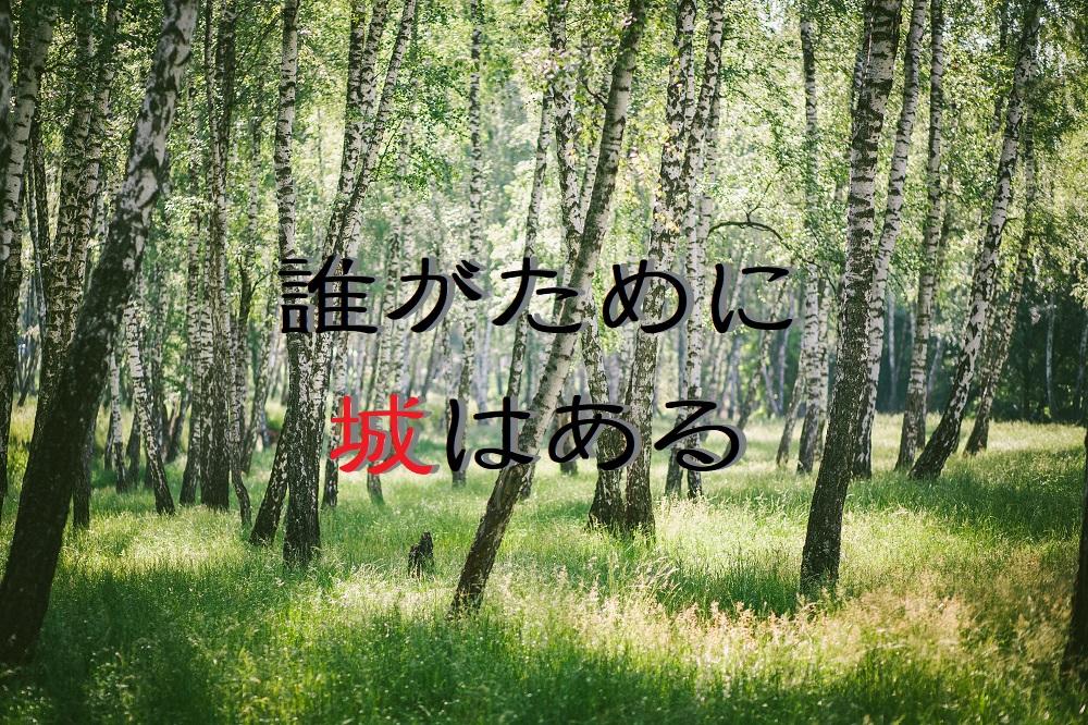 f:id:aoikara:20170703154056j:plain