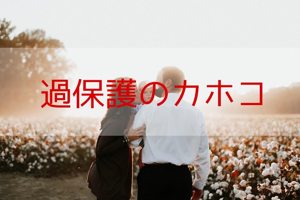 f:id:aoikara:20170713205637j:plain