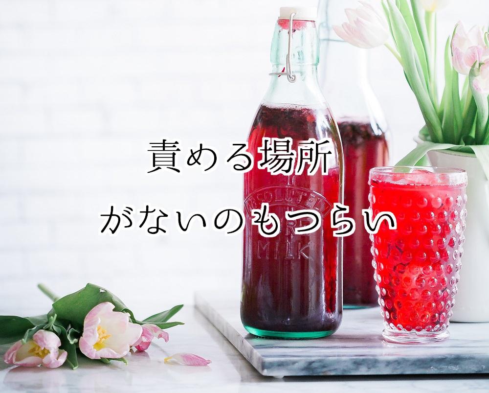 f:id:aoikara:20171210193432j:plain