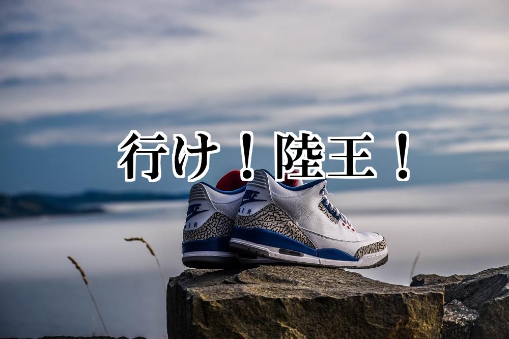 f:id:aoikara:20171228163732j:plain