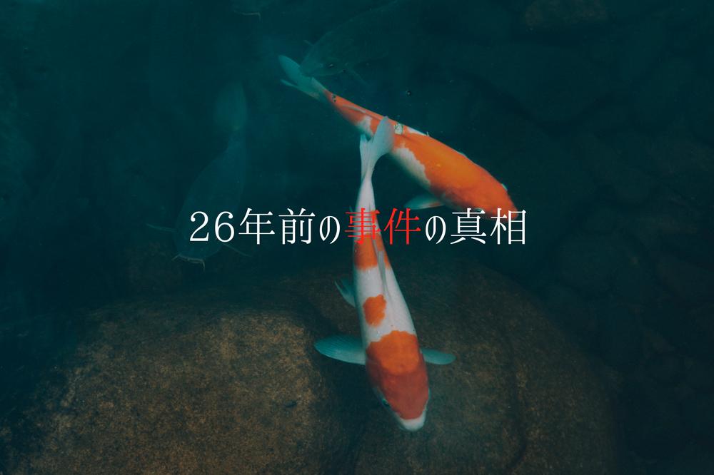 f:id:aoikara:20180125210454p:plain