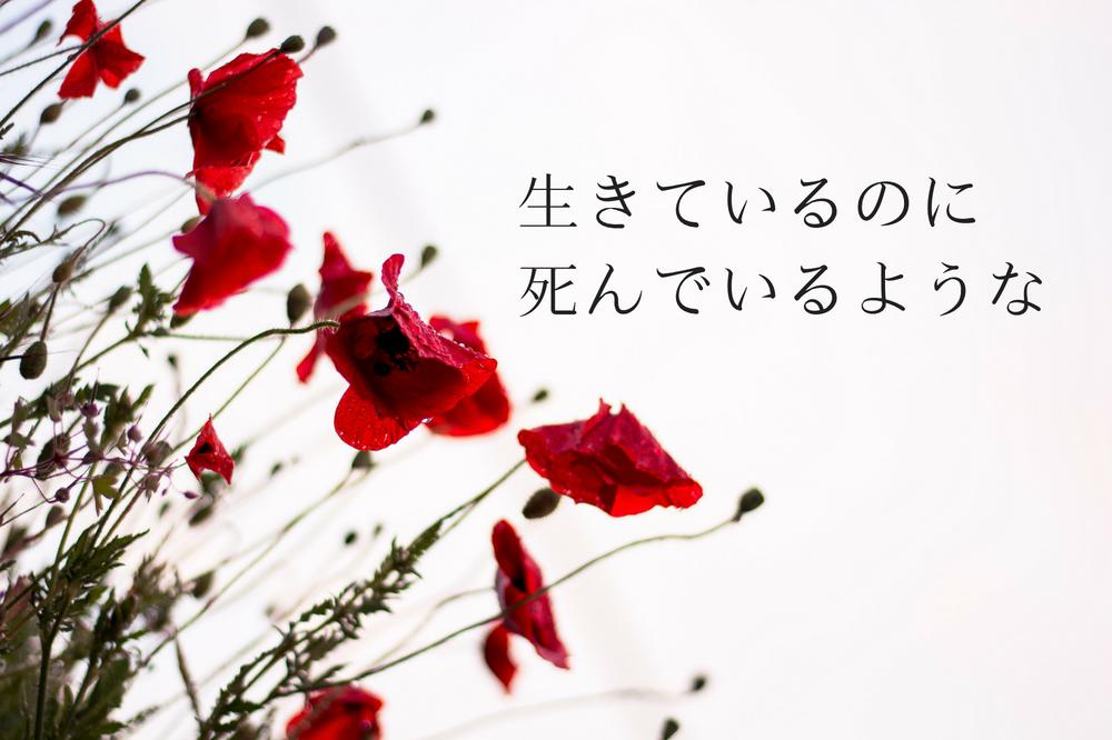 f:id:aoikara:20180527173847p:plain