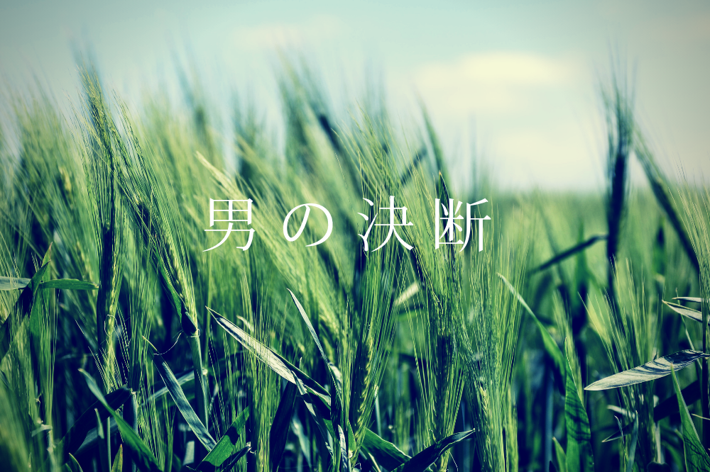 f:id:aoikara:20181110170645p:plain