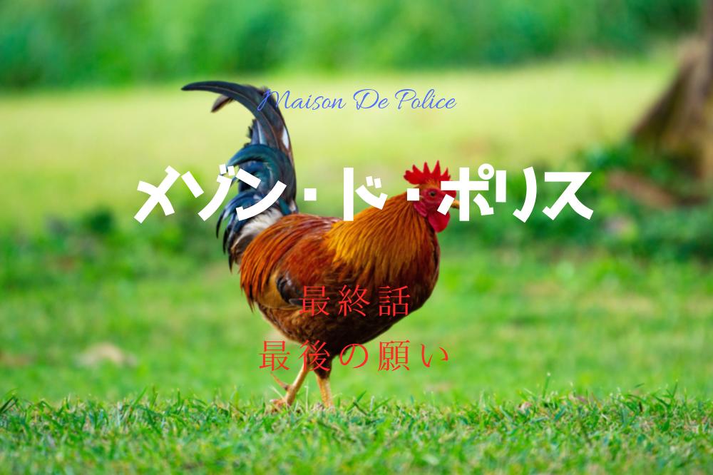 f:id:aoikara:20190320140744p:plain