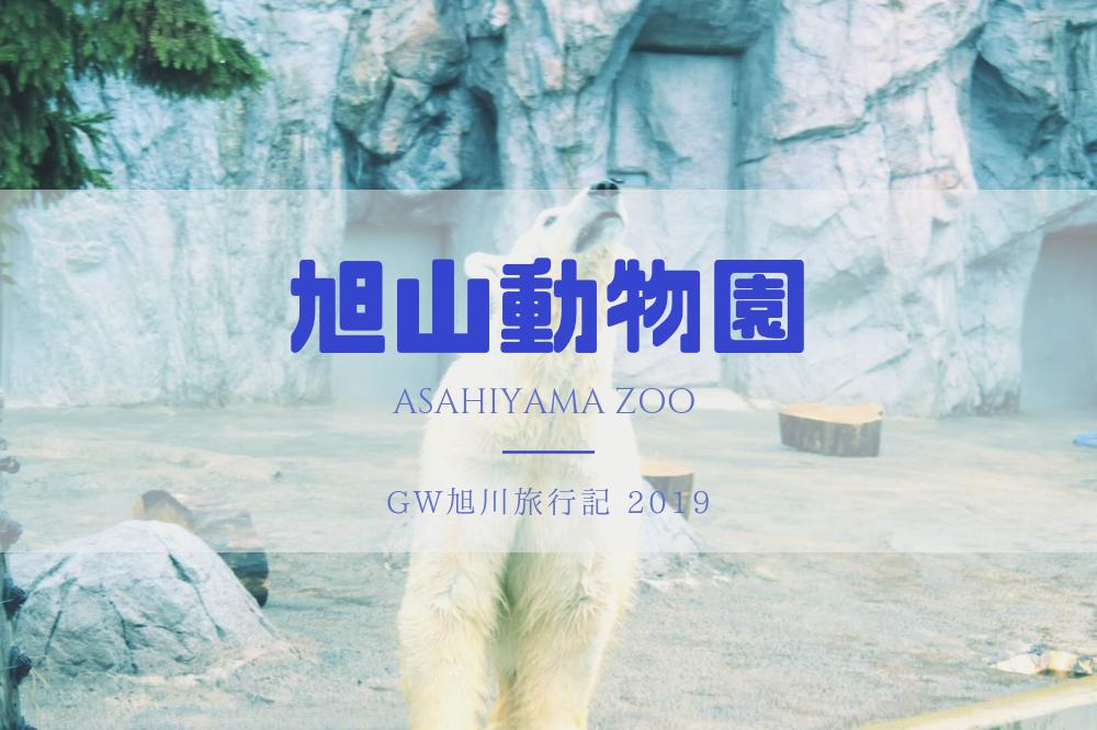 f:id:aoikara:20190515121627p:plain