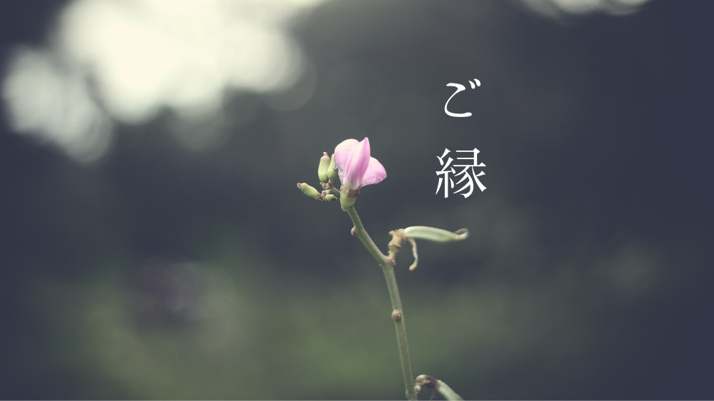 f:id:aoikara:20191203224306p:plain
