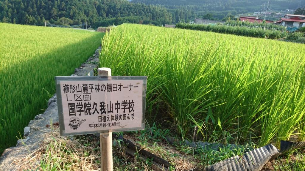 f:id:aoikaze-hiromi:20160817001043j:plain