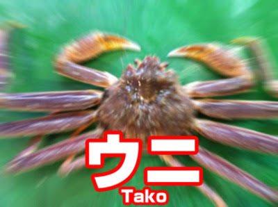f:id:aoiro-midori:20210221032252j:plain