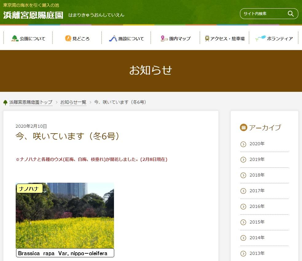 f:id:aokami:20200216143924j:plain