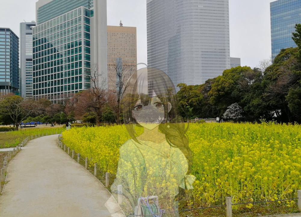 f:id:aokami:20200216145558j:plain