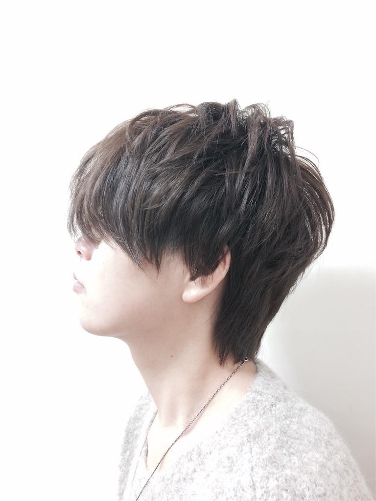 f:id:aokiyusaju:20170107004822j:image