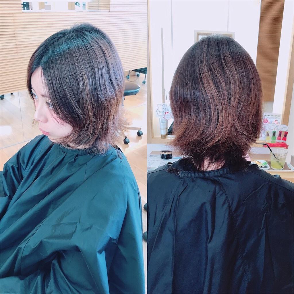 f:id:aokiyusaju:20180207231255j:image