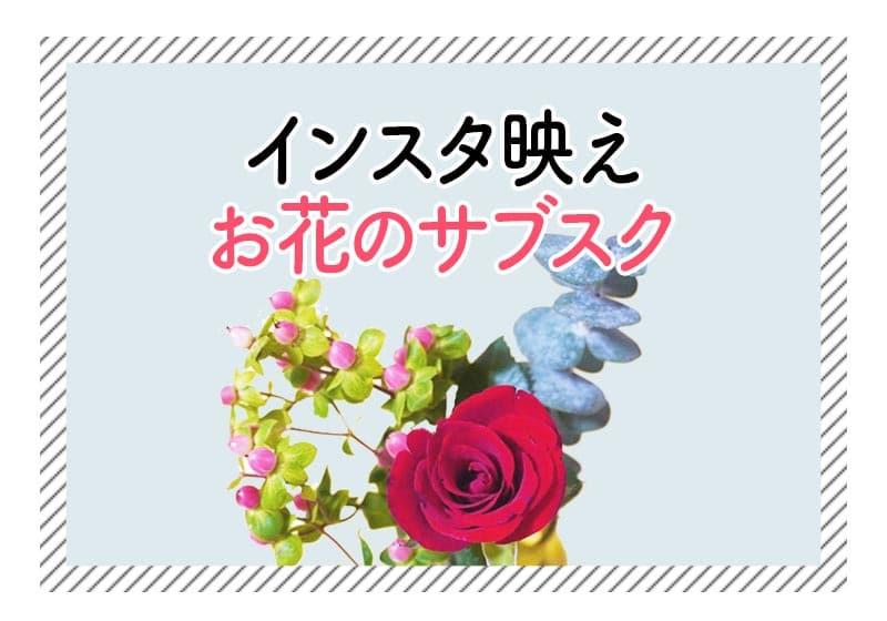f:id:aomamadiary:20210117054720j:plain