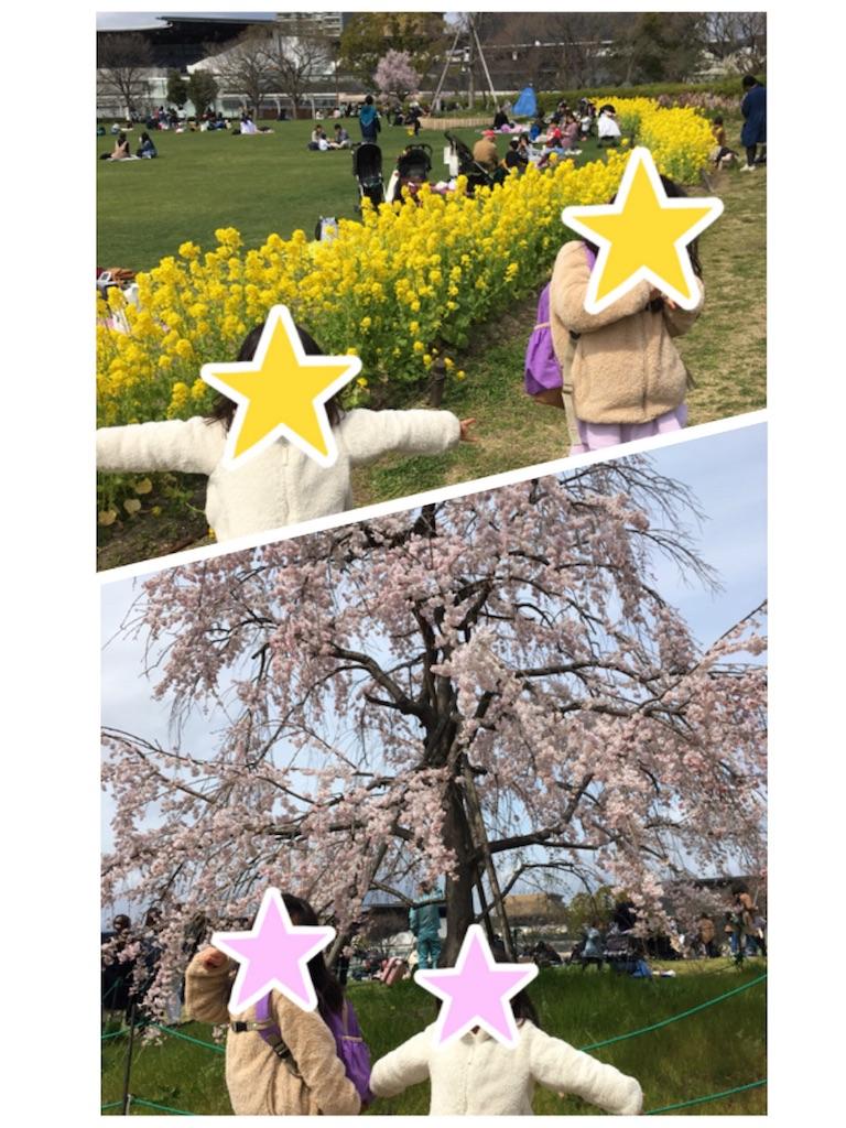 f:id:aomisayu:20190330054552j:image