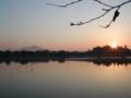 日の出 砂沼公園(茨城県下妻市)