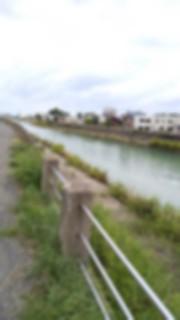 f:id:aomori_ikuji:20190905210928j:image