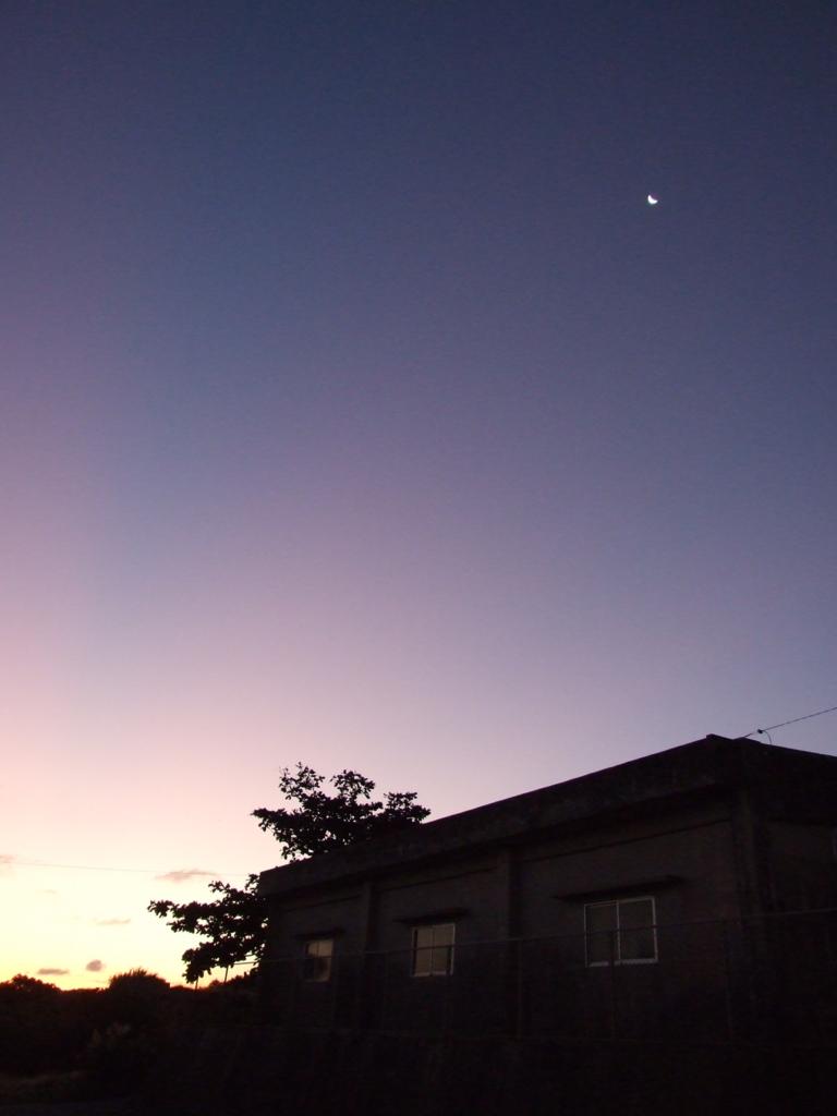 f:id:aoneko11:20161231085711j:plain