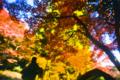 秋色の点描画