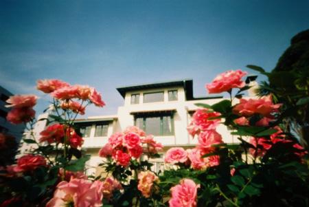 薔薇香る 山手111番館