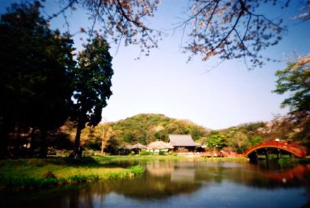 陽春の称名寺