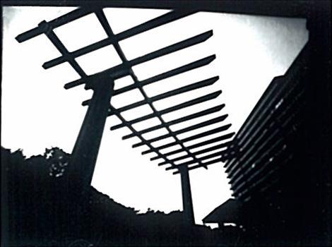 真夏の梯子