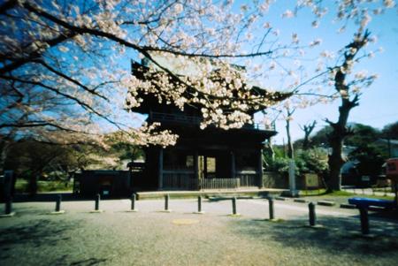 櫻花の仁王門
