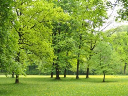 f:id:aoumiwatatsumi:20210501155452j:plain