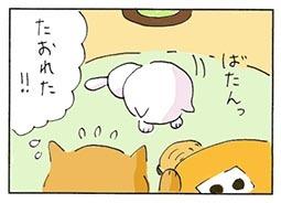 bonbon3.jpg