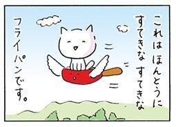 flyingpan8.jpg