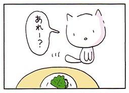 kashiwa1.jpg