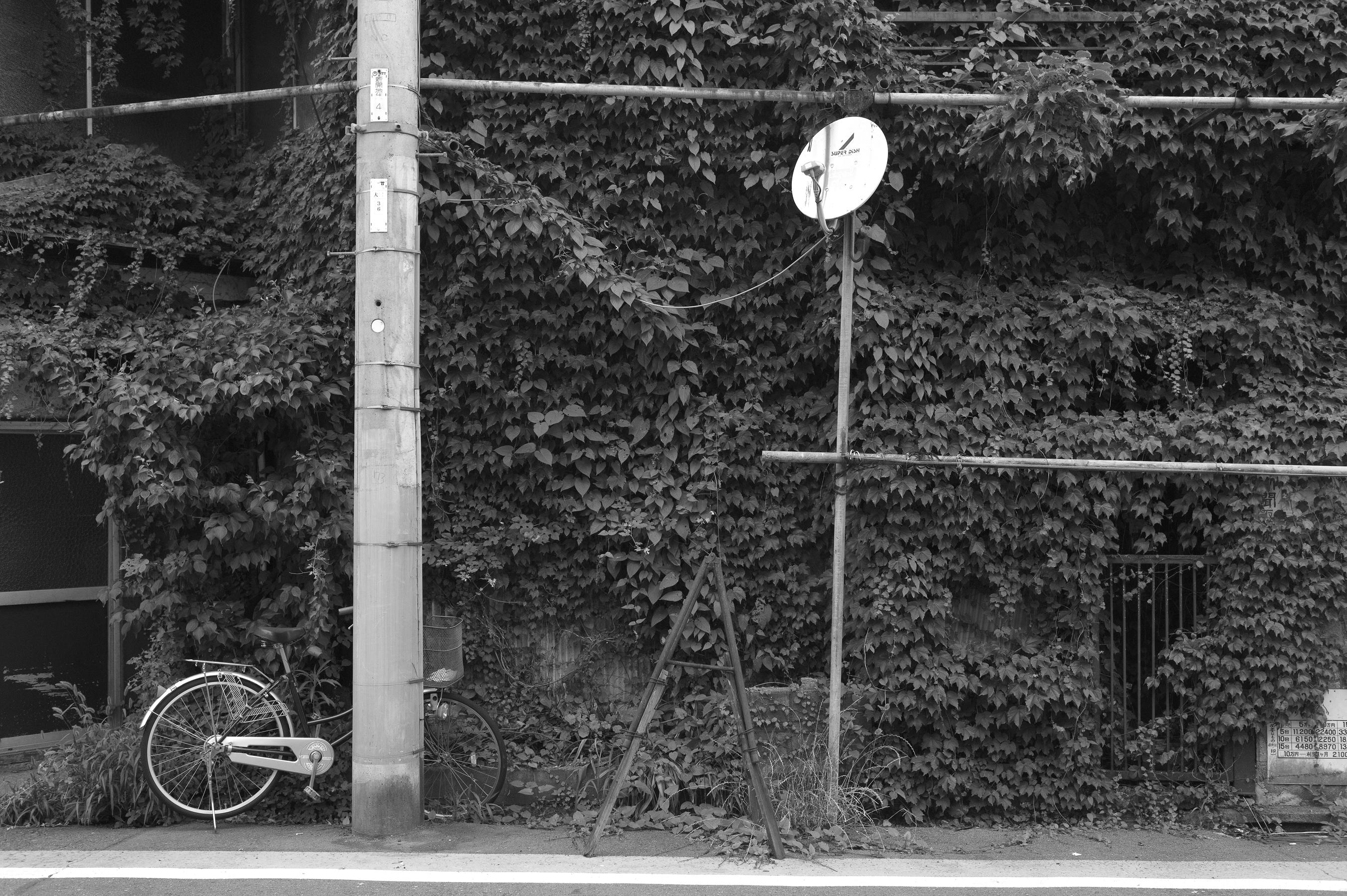 f:id:aoyama-takuro:20180808213957j:plain