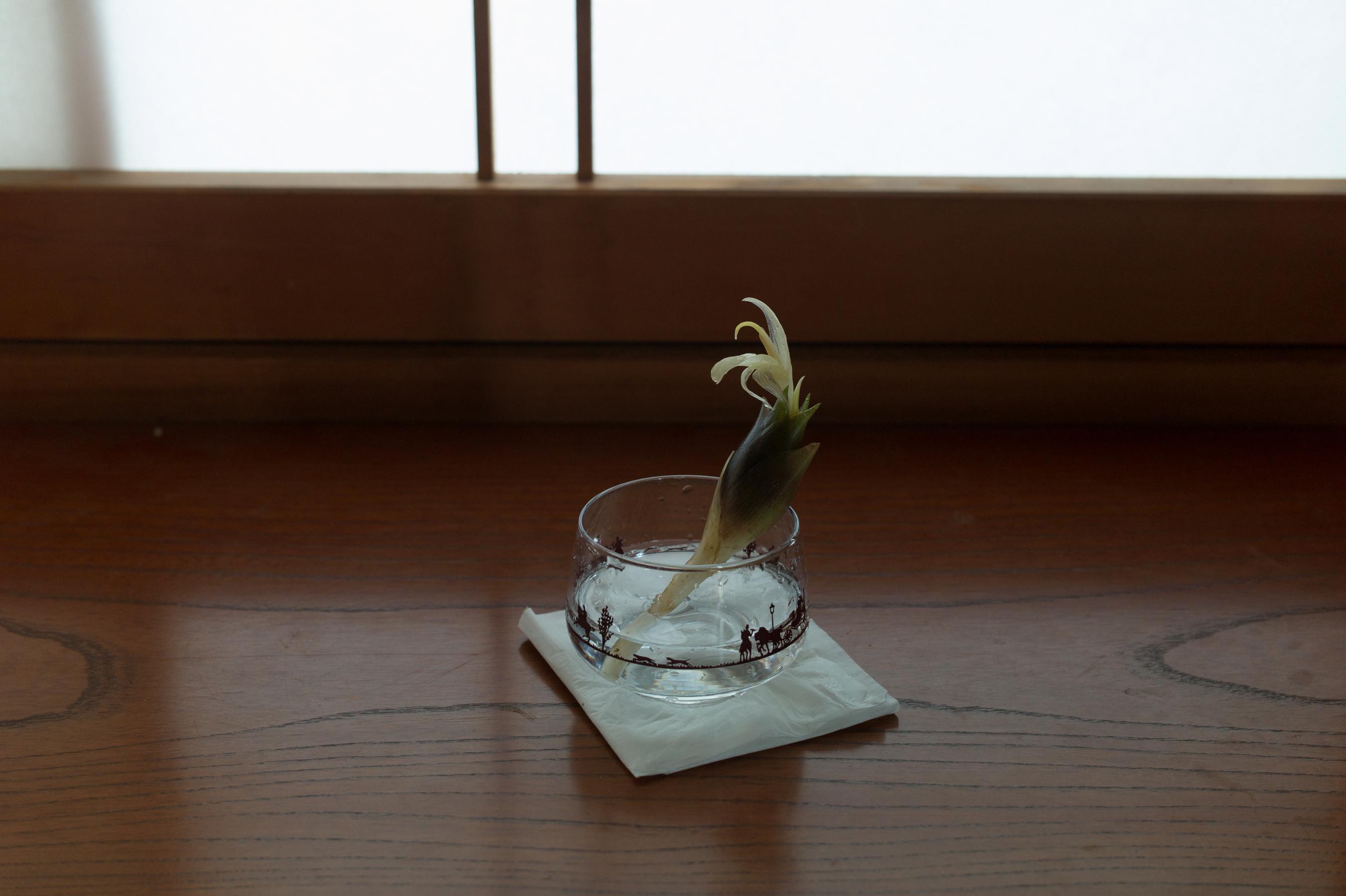 f:id:aoyama-takuro:20190814213313j:plain