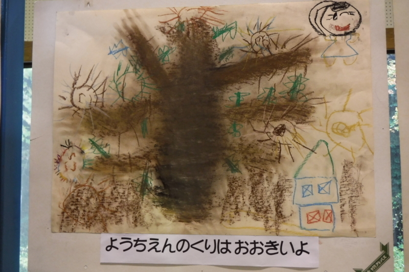 f:id:aoyama-yosami:20171117222725j:image