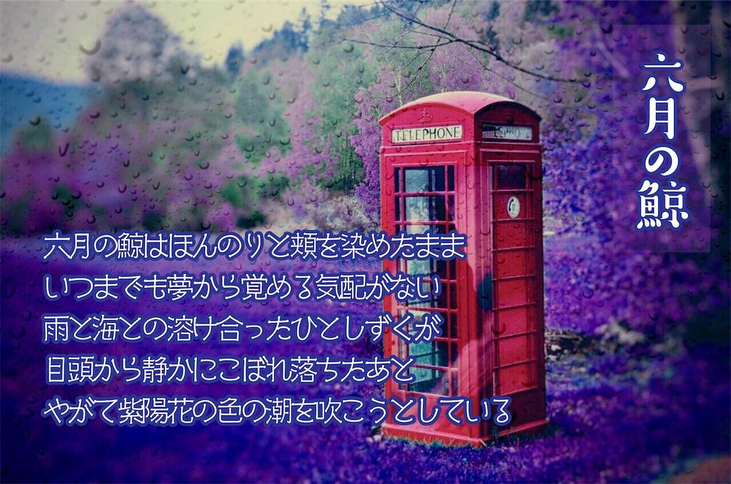 f:id:aoyamayuki:20191225144957j:image