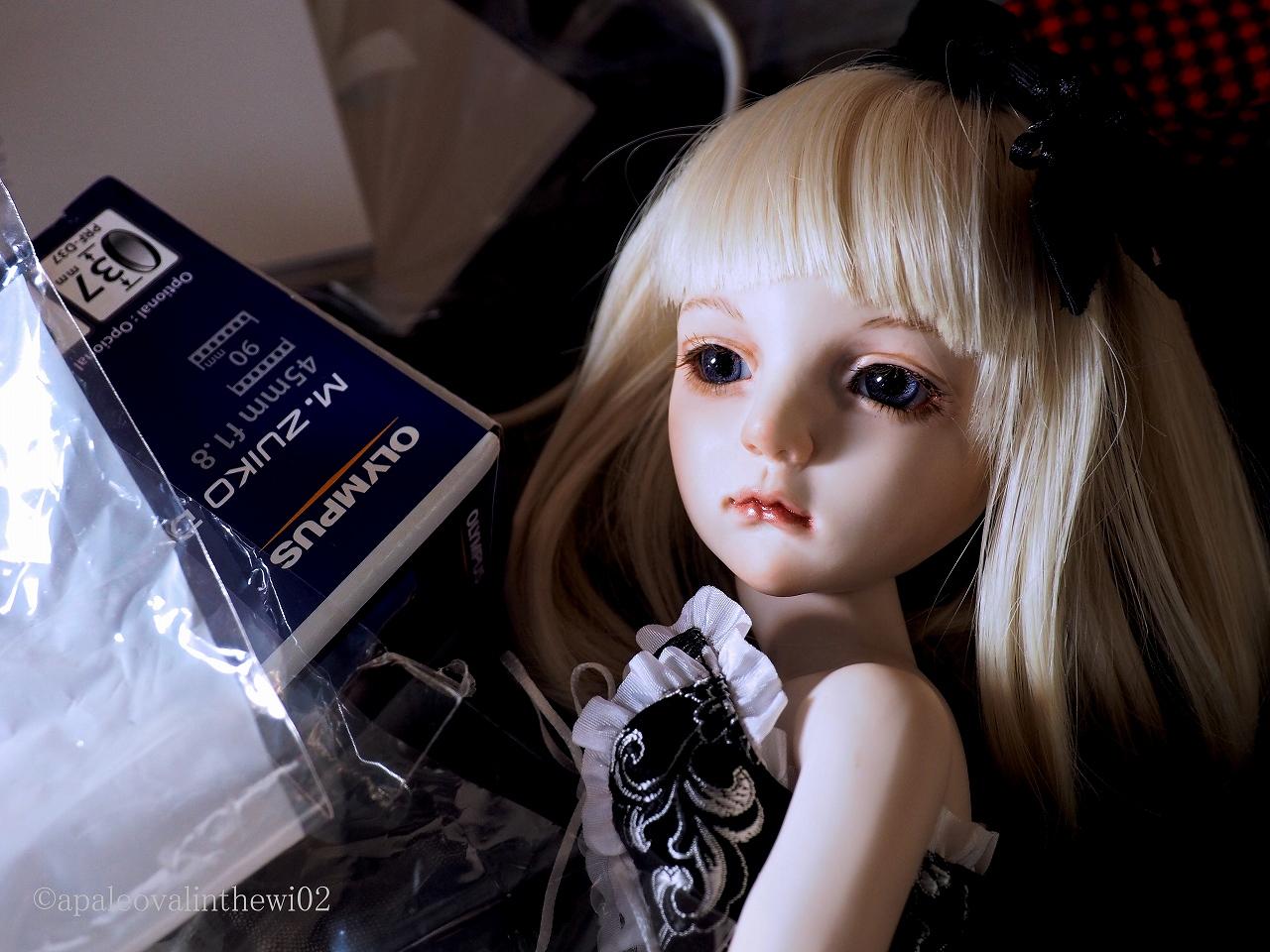 f:id:apaleovalinthewi02:20170517094753j:plain