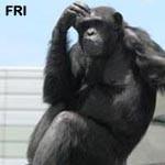f:id:apesnotmonkeys:20081226100336j:plain