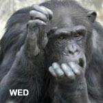 f:id:apesnotmonkeys:20081226100433j:plain