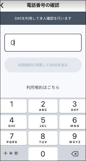f:id:apicode:20180612153031j:plain