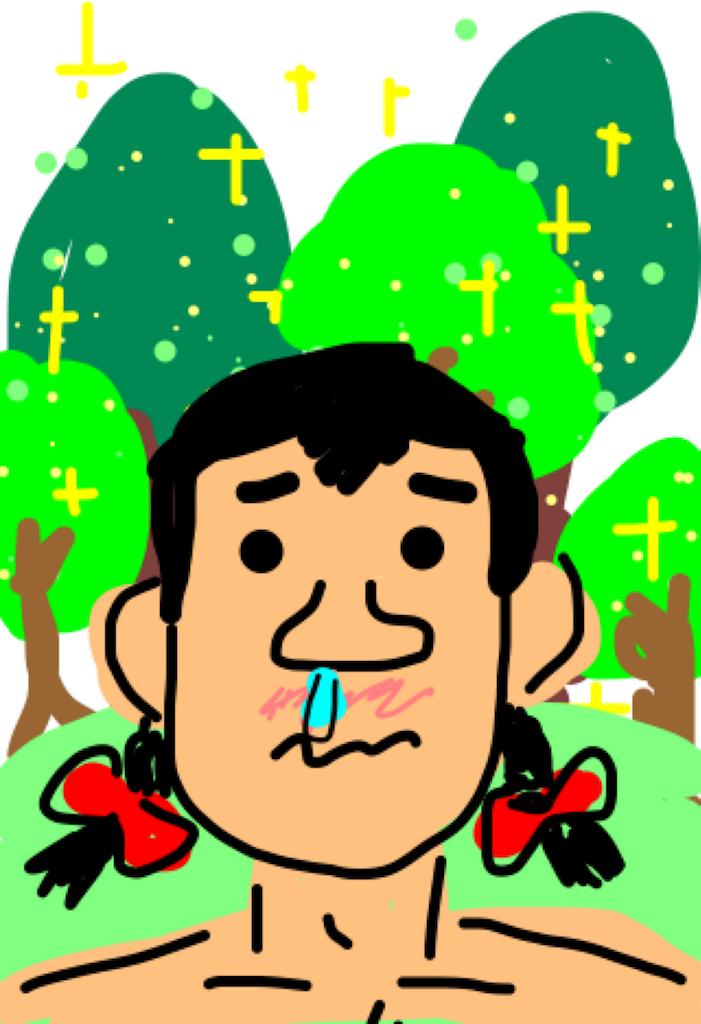 f:id:apiyama-apisuke:20180524210507p:image