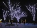 [夜景]西公園のイルミネーション