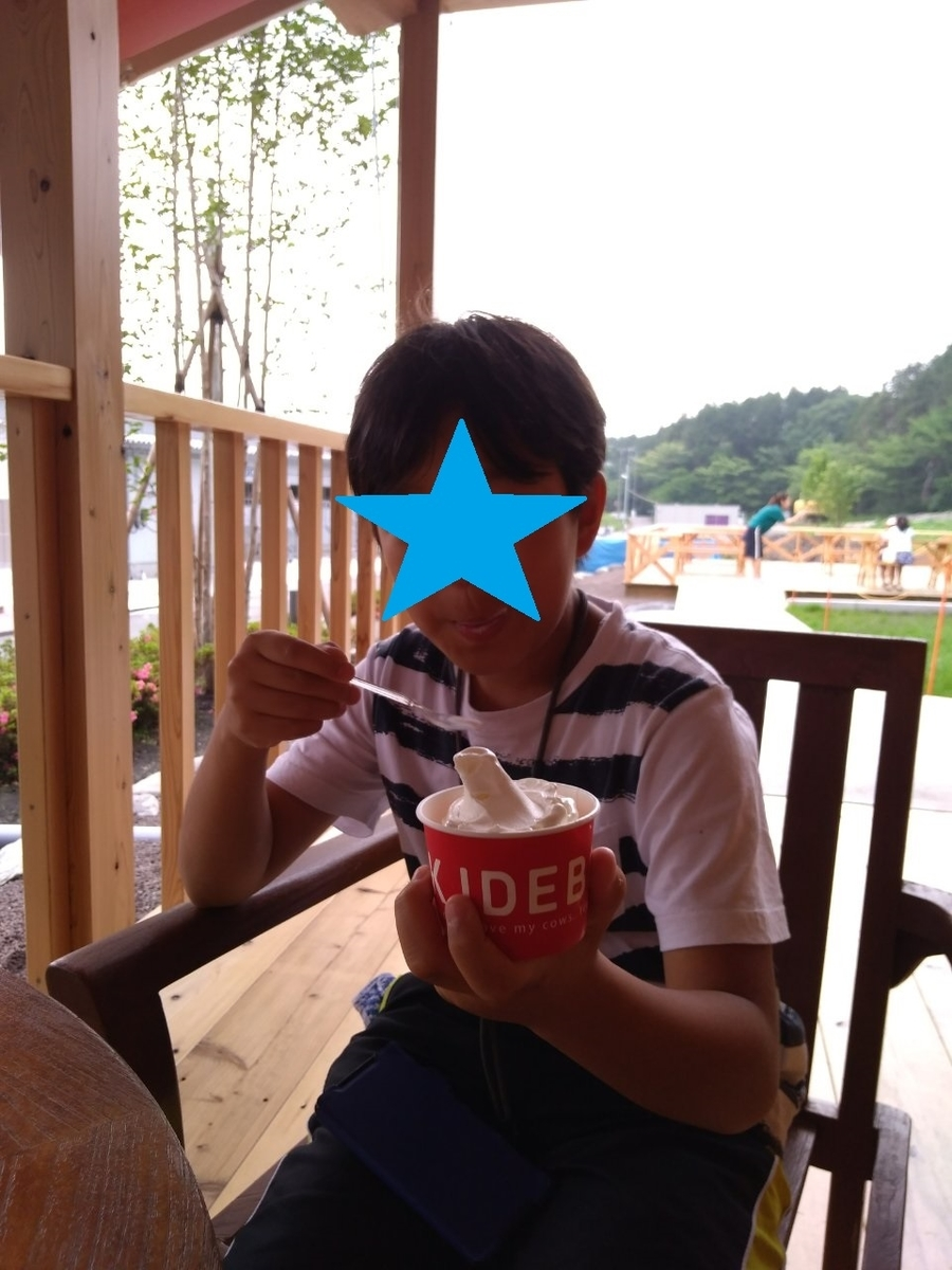 f:id:apple_bee:20190615011952j:plain