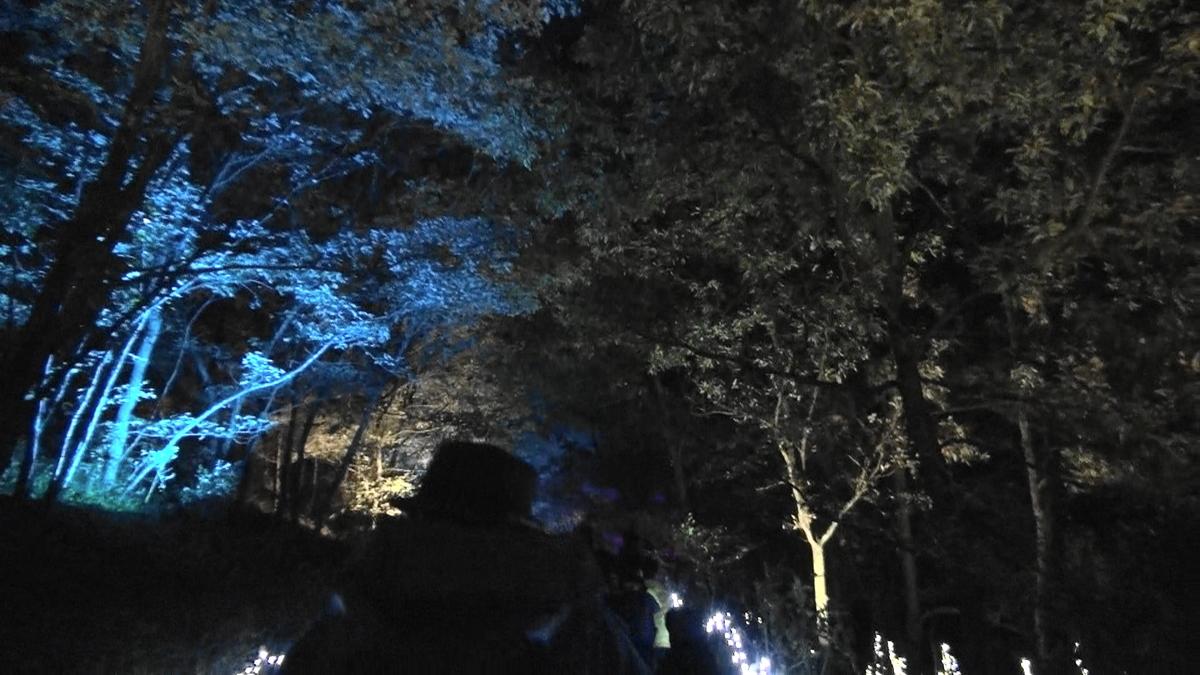 ひばの里から花の広場へその1