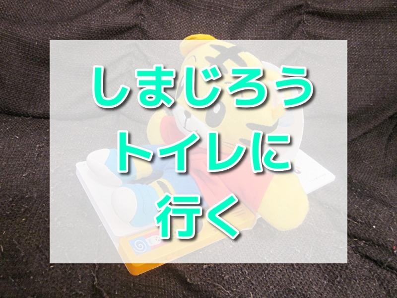こどもちゃれんじぷち6月号アイキャッチ