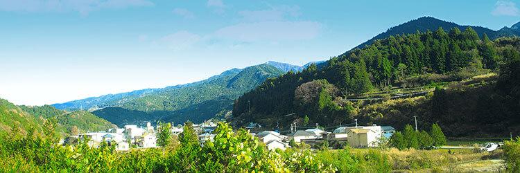 希少価値につながる働き方、神山町のサテライトオフィスで働くこと