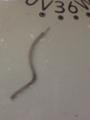 白熱電球 バネ切断