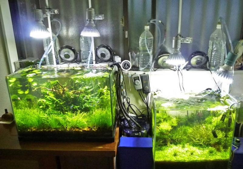 f:id:aquarin:20150721212037j:image