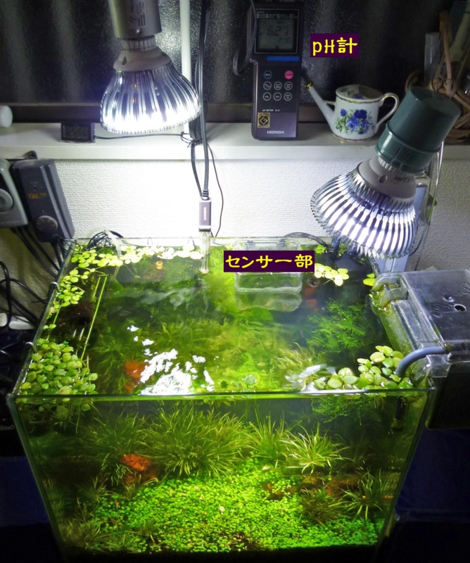 f:id:aquarin:20160130100518j:image