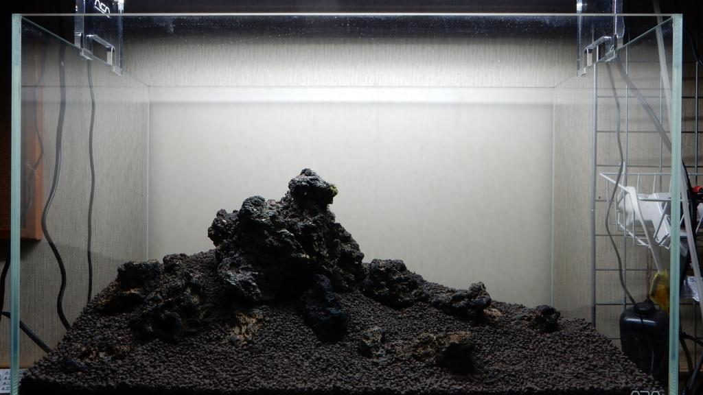 f:id:aquaticplants:20161010221938j:plain