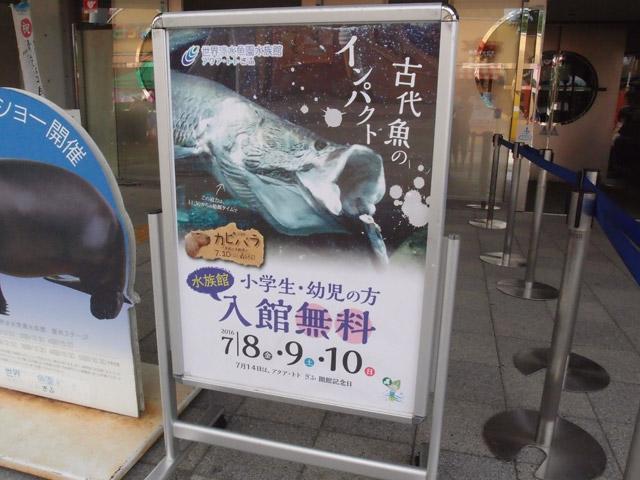 f:id:aquatottotoday:20160711051559j:plain